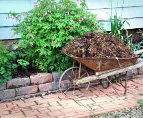 Mulching for Free