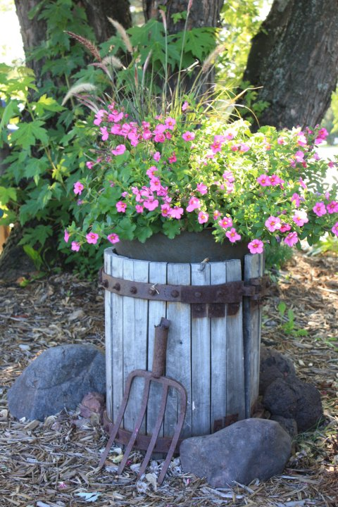 Wine Press Container Garden