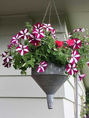 Vintage Funnel Planter