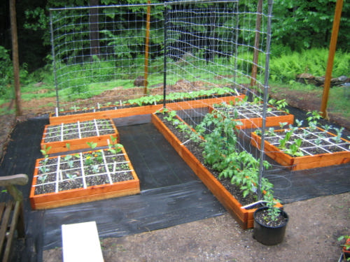 Square foot gardening sfg growing more in less space for Square foot garden designs