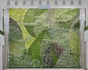 Living Wall at Edmonton International Airport Courtesy Green Over Grey