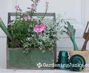 A Cottage Garden Tour [Video]