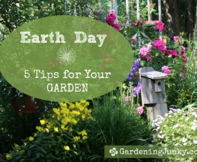 Earth Day – 5 Tips For Your Garden