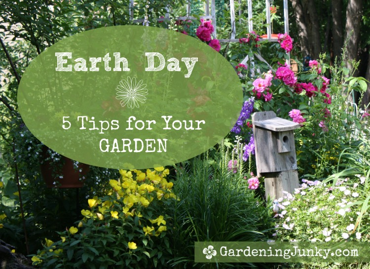Earth Day Tips for Your Garden
