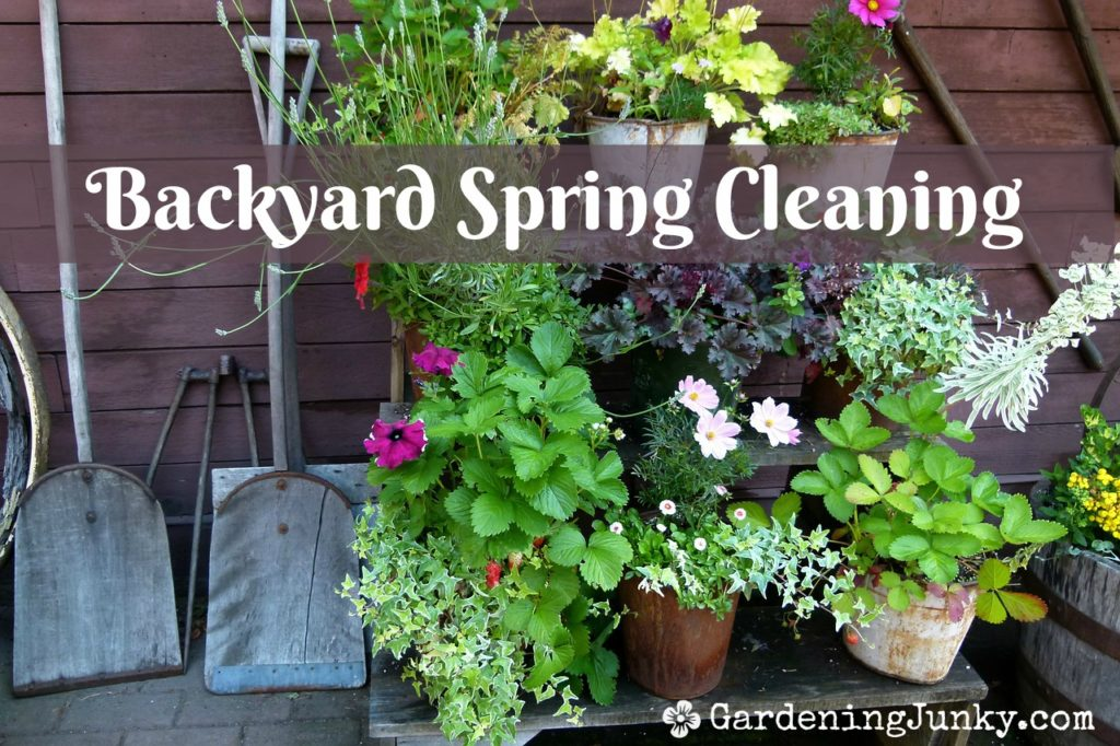 Backyard spring cleaning