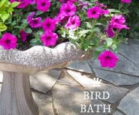DIY Bird Bath Planter Ideas